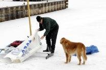 Dog_ice10